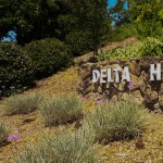 Delta Hawaii Stone Wall Sign